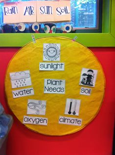 Next month is June! I am so excited for June! Here is a little look into some of our spring time activities. In April we spent some time le. First Grade Science, Cute Posts, Time Activities, Water Plants, Preschool, Teaching, Flowers, Room, Plants