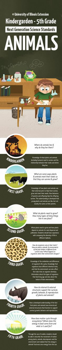 A K-5 Guide to Learning About Animals (using NGSS goals) I love that this shows the learning progression.