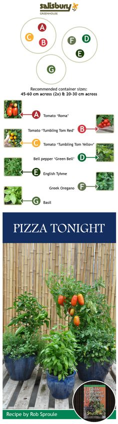 #Pizza from your #garden! From Edible Container Gardens in Canada - by Rob Sproule, Salisbury Greenhouse