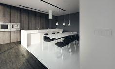 tamizo architects group e-house_interior_design_rosanow