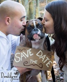 Love it when clients bring their pets to the shoot! This boxer, Kia, was just too cute! Who can resist an engagement photo like this?!? They used this photo for their save the dates!          Photo by Dandilynn Photography  www.dandilynn.com             Photo of @Amanda Heinz