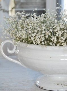 Baby's breath-use my soup tureen and add some wildflowers
