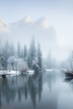 Winter wonderland; metal photo print. Picture from a frosty Yosemite National Park.