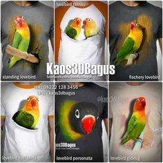 KAOS LOVEBIRD, Kaos BURUNG, Kaos KICAU MANIA, Seragam Klub Burung, Kaos 3D, Kaos Gambar Burung, WA : 08222 128 3456, LINE : kaos3dbagus, https://www.facebook.com/kaos3dbagus