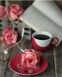 A bloom, a brew of tea, a book is a perfect recipe for a personal pause. Steep on!