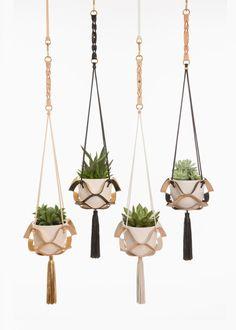 Plantas de diseño - LOOC