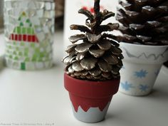 pinecone-trees-005.jpg 1,024×768 pixels