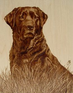 pyrography art by Julie Bender..burning designs in wood