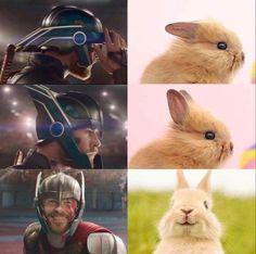 25 Marvel memes that are never funny - Avengers - Humor Avengers Humor, Marvel Avengers, Marvel Jokes, Films Marvel, Funny Marvel Memes, Marvel Dc Comics, Funny Comics, Thor Meme, Loki Thor