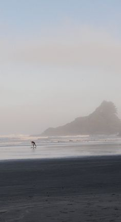 Surfs up,early morning at Cox Bay, Long Beach, Pacific Rim National Park,#Vancouver Island 2011