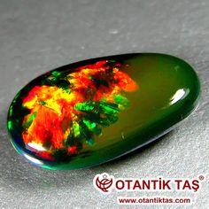 Opal renk oynamak çok özel bir cazibe ve hayranlık hayran kalacaksınız. Ama ne bu olguyu neden olur? Bu soru çok uzun bir süre için cevap imkansızdı. 1960'larda Avustralyalı bilim adamlarından oluşan bir ekip, bir elektron mikroskobu ile incelendiğinde Opals Sadece zaman, silika jel küçük küreler renklerin fantastik oyun sorumlu girişim ve kırılma belirtileri, neden olduğu ortaya çıktı. az ya da çok küçük yapılarda düzenlenmiş küreler, taş geçişi ışık diseksiyon ve her zaman yeni ve her…