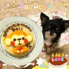 2015.11.25   Happy birthday Bell    我が家のプリンスBell が4歳になりました  Bell は 我が家の ジョージ王子とBoA姫から 産まれた わたしの大切な大切な孫   べぇべぇ 産まれて来てくれてありがとう   Bellにはナゼかおサルなケーキを作ってみました   Bell #お誕生日おめでとう #happybirthday #4歳 #孫はかわええ #Handmadecake #おサル#手作り#ケーキ#なんで #また無計画#買い物行きなさいよ by chihuahuakaachan