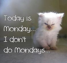Today is Monday...I don't do Mondays...