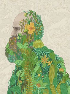 The Seeds That Sowed a Revolution Galapagos Finches are famous, yet Darwin learned more about evolution from the plants.