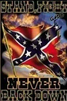 NEVER SURRENDER !!!