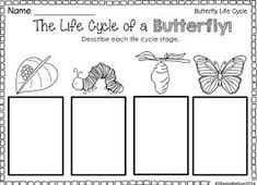 Main Clause And Subordinate Clause Worksheets Excel Check Out Our Worksheets To Help Students Learn About The  Vocabulary Games Worksheets Pdf with Worksheets Year 2 Pdf Resultado De Imagen Para Life Cycle Of A Butterfly Worksheet French Weather Worksheets Excel