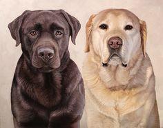 Pet portrait commission, currently taking them!  Oil on canvas.    angelagramart.com