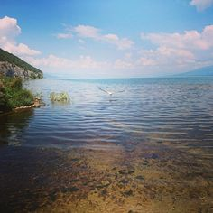 Lake Prespa! One of the most vivid landscapes in all of Greece! Greek Memories - Part 15. . . . . . . . #adventure #agiosgermanos #august #balkans #beans #dalmatianpelican #ελλαδα🇬🇷 #ελλάδα #europe #farms #forest #ghosttown #green #greece #hibiscus #hiking🌲 #lakes #landscape #makedonia #μακεδονία #nature #northerngreece #pelican #pisoderi #prespa #quiet #verdant #view #wild Ghost Towns, Dalmatian, Lakes, Hibiscus, Greece, Landscapes, Beans, Spa, Hiking