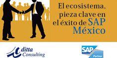 SAP Partners en México  SAP Consultores en México, SAP ERP, Conectores SAP  DITTA CONSULTING Calle Heliópolis No.217, Colonia Clavería C.P. 02080, México, D.F. 52(55) 5342-2159  http://www.ditta.com.mx/