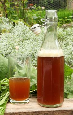 Dandelion and burdock beer - being perennial, these are available all year, but it is important to collect them only when the leaves are visible so that you do not confuse them with anything nasty. Recipe by John Wright.