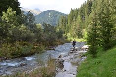 Canazei, Val di Fiemme, Trentino, Italia