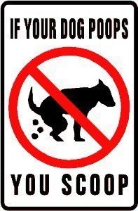 If Your Dog Poops, You Scoop Sign.  Love this sign