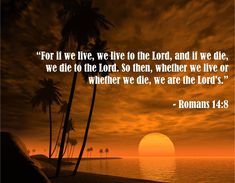 Bible Quotes About Death Entrancing Romans 837  ™❤.holy ミ‹✞›彡 Bible.✌™  Pinterest  Roman