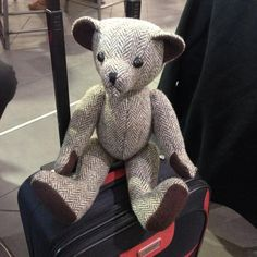 Taking a ride on the hand luggage #tweedyted a little nervous for the flight
