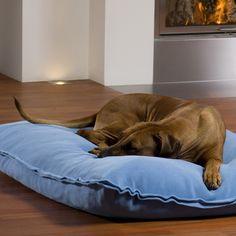 Koiran sänky DIVAN