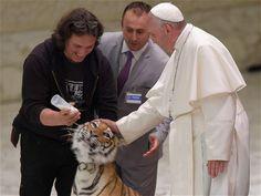 """Papa Francisco con tigre de bengala. Francisco recibió este jueves a miles de artistas circenses en el aula Pablo VI del Vaticano, que se exhibieron ante él y le llevaron dos cachorros de tigre y de pantera para que los pudiera acariciar. """"Saben hacer sonreír a un niño, iluminar la mirada de una persona y hacer que los hombres se sientan más cercanos los unos de otros, pero también asustar al papa con estas caricias. ¡Son poderosos!"""""""