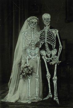 skeleton bride.