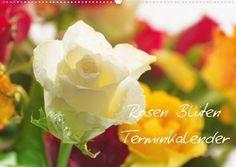 Rosen Blüten Terminkalender (Wandkalender 2013 DIN A3 quer) von Calvendo, http://www.amazon.de/dp/3660085030/ref=cm_sw_r_pi_dp_tTEerb14CZ2GP