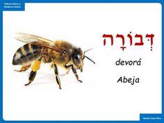 Hebrew Quotes, Hebrew Words, Learn Hebrew, Shabbat Shalom, Torah, The Covenant, Savior, Israel, Education