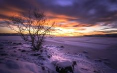 Preview wallpaper buskerud, norway, lake, winter, snow