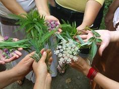 Herbal medicine for infections,  cold, flu, ....