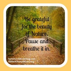 Be grateful for the beauty of nature ~ This is why I love to walk...