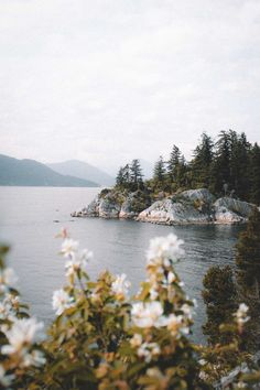 salboissettphoto: Ocean views at Whytecliff Park Bc The Effective Pictures We Offer You About nature aesthetic flower A quality picture can tell you many things. You can find the most beautiful pictur Nature Aesthetic, Travel Aesthetic, Summer Aesthetic, Landscape Photography, Nature Photography, Travel Photography, Photography Tips, Photography Aesthetic, Photography Hashtags