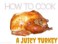 Nice -  - 37 Turkey