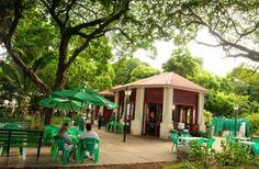 Mais antiga e arborizada praça de Fortaleza, o Passeio Público é um dos patrimônios históricos, culturais e afetivos de Fortaleza (Foto: Nely Rosa)