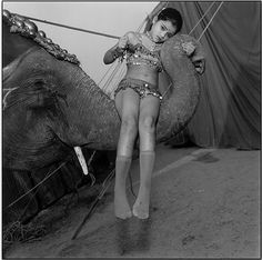 hoisted on high Mary Ellen Mark, Roger Mayne, Helen Levitt, Writing Images, Aerial Acrobatics, Eugene Atget, Robert Frank, William Eggleston, Tattoo Illustration