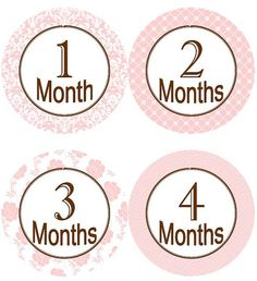 Baby Monthly Milestone Growth Stickers by GinaMarieOriginals, $10.00