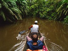 Canoing the creeks in the Upper Amazon with your local guide, Upper Amazon tours and lodges.  I need to get to the Amazon!