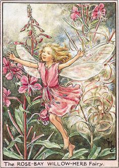 Deze ook erg lief als muurschildering, meer roze dan de andere afbeelding. En ook op Willows lijf geschreven ;) Google Afbeeldingen resultaat voor http://www.ltlprints.com/images/0018/3123/183123N01S001_bthumb.png%3F1275005407