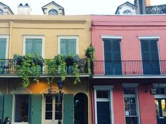 Pops of color brought to you by Royal Street. (Photo by @carolinemalcolm via Instagram)
