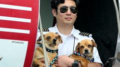"""""""In June 2017, 105 pets facing euthanasia in TX were flown to Seattle where they were placed in no-kill shelters where they'd find their f/ever homes! In shelters across the cntry, highly adoptable dogs & cats are euthanized just because the shelters are o/crowded. FreeKibble's Flights to Freedom along w/Wings of Rescue help save homeless pets by flying them to shelters to be immediately adopted! They flew 10K pets to new homes last year alone!"""" Click to watch/share video (2:24)…"""