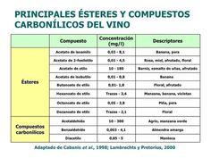 9 Componentes básicos del vino - vinopack
