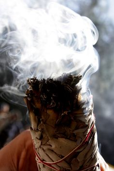 The smudge stick is something often seen in modern day spiritual practices, but what of its storied past in North America? Read on to learn its history. Smudging Prayer, Sage Smudging, Wiccan, Magick, Witchcraft, Salvia, Burning Sage, Smudge Sticks, Spiritual Practices