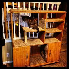 Saw this on facebook and had to make a pin for this board. These could really sell! Cat Tree/Cat Tower/Cat Playhouse from reclaimed entertainment center!! I like this idea... I would paint and antique the wood, add cooler carpet, cut holes in the levels so the cat could reach the top, and make one of the bottom cabinets into a litter box area that could be reached through the side. (Hopefully it would help hide odors.) I think I'd also cut out an area to place a food and water dish, for…