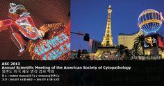 ASC 2013 Annual Scientific Meeting of the American Society of Cytopathology 올랜도 미국 세포 병리 검사 학회