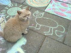 Chalk Portrait
